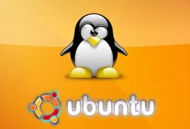 Laptops Distributed by Punjab Govt Run Ubuntu