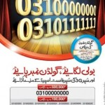 Zong Golden Number Bidding